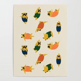 Pugs Swimmer Poster