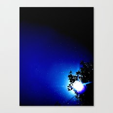 Stars in a day  Canvas Print