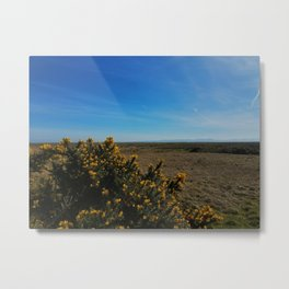 Scotland Flower Path Metal Print