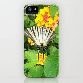 Scarce Swallowtail Feeding on Lantana iPhone Case