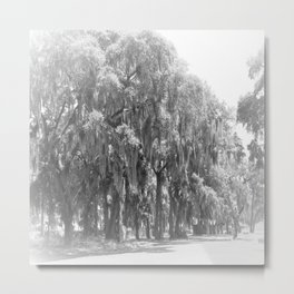 Black and white Savannah Trees Metal Print