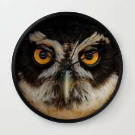 Trading Glances with a Spectacled Owl Wall Clock