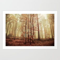 It´s autumn again Art Print