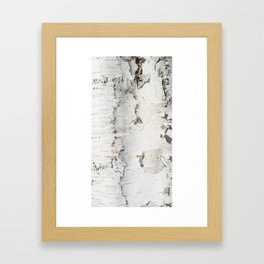 Birch bark pattern Gerahmter Kunstdruck