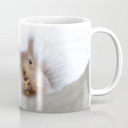 Squirrel with a walnut Coffee Mug