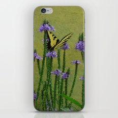 The Colors of Summer iPhone & iPod Skin