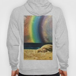 Sleepy Seal on the Beach Hoody