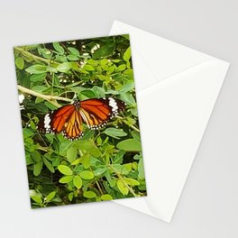 Common Tiger Stationery Cards