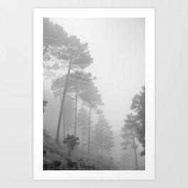 Foggy morning. Wander Art Print