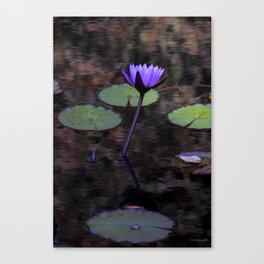 Barnsley Lillypad Canvas Print