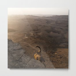 Ibex Over the Ramon Crater Metal Print