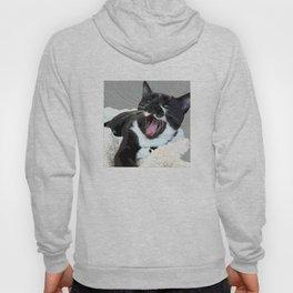 A yawn Cat.    cats, cat, yawn, pattern, pet, feline, animals, Society6. Hoody
