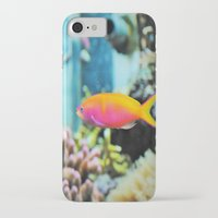 the life aquatic iPhone & iPod Cases featuring Life Aquatic by JustAlly