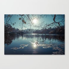 India - Blue lake Canvas Print