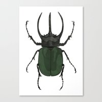 atlas Canvas Prints featuring Atlas Beetle Insect Digital Watercolor Painting Art Print- minimalist art - gallery wall art - anima by Kelsi Eldredge