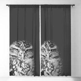 grumpy owl Blackout Curtain