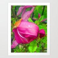 Pink Rain Drops Art Print