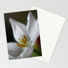 Tulip Beauty Stationery Cards