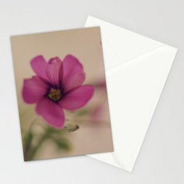Tear in my heart Stationery Cards