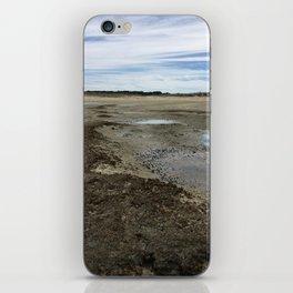 Wellfleet Salt Marsh iPhone Skin