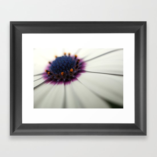 Roses are red, Violets are white..? Framed Art Print