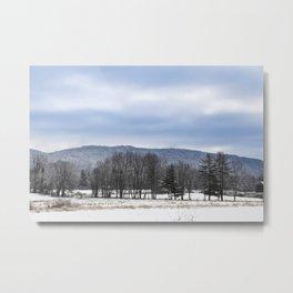 The Winter Line Metal Print