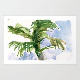 Tulum Swaying Palm Tree Art Print