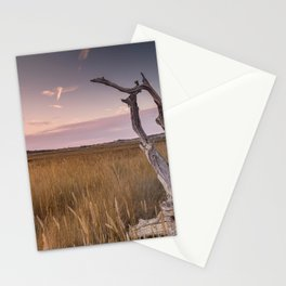Newtown Sunset Stationery Cards