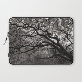 Magnolia Trees in Blossom 01 Laptop Sleeve