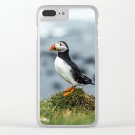 Puffin Iceland Portrait Art Print Clear iPhone Case
