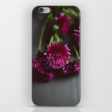 Dalloway's iPhone & iPod Skin