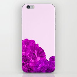 Purple Peonies On A Pink Background #decor #society6 #buyart iPhone Skin