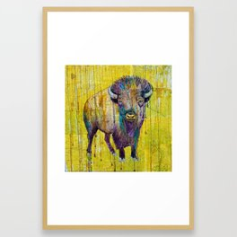 Colorado Buffalo Framed Art Print