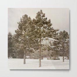 The Pines Metal Print