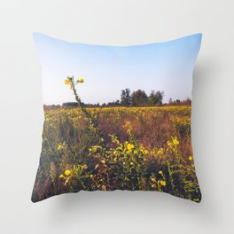 Uncultivated field in the Lomellina countryside at sunset full of yellow flowers Throw Pillow