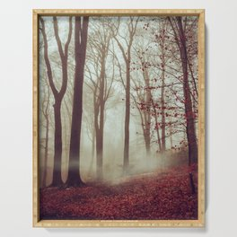 Late fall Forest in Fog Serving Tray
