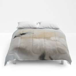 Delilah  Comforters