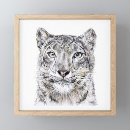 Snow Leopard Framed Mini Art Print
