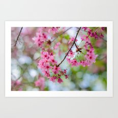 It's time to Bloom! Art Print