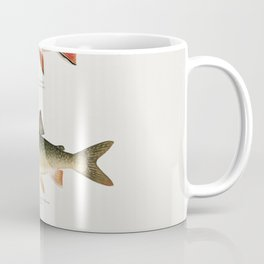 Illustrated North American Freshwater Trout Game Fish Identification Chart Coffee Mug