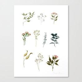Delicate Floral Pieces Canvas Print