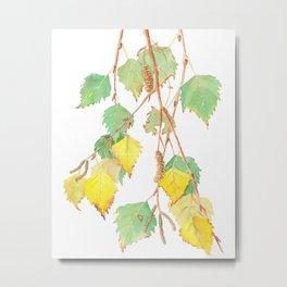 Autumn birch tree branch watercolour Metal Print
