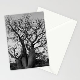 Boab Family in black and white Stationery Cards