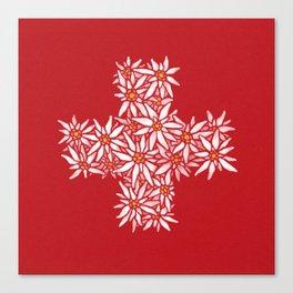 Swiss Edelweiss Canvas Print