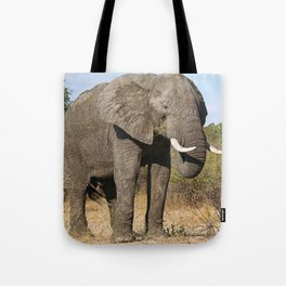 Huge elephant, Africa wildlife Tote Bag