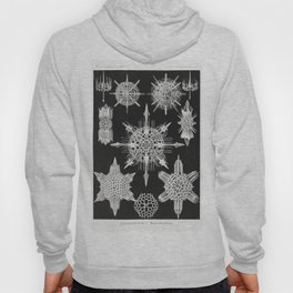 Black and white Marine creatures illustration by Ernst Haeckel Hoody
