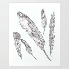 Swedish Feathers Art Print
