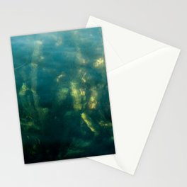 Fresh water seeweed, algae in lake Iseo, Italy Stationery Cards