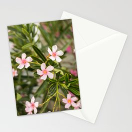 Flowers Blooming in Milos, Greece Stationery Cards