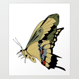 Beautyful Butterfly Art Print